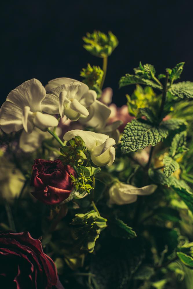 O.T. (Rosebuddy IV)