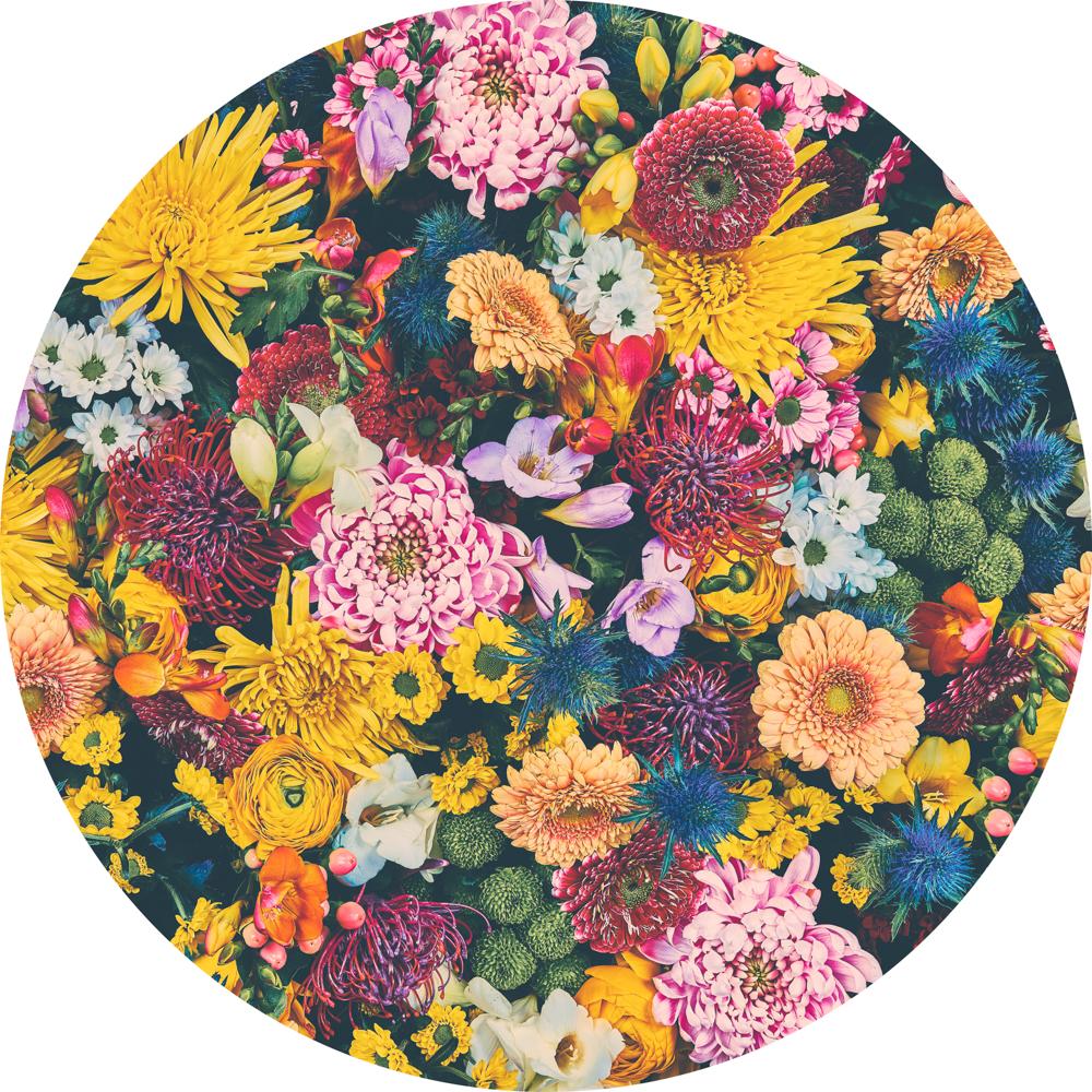 Flower Pop 1